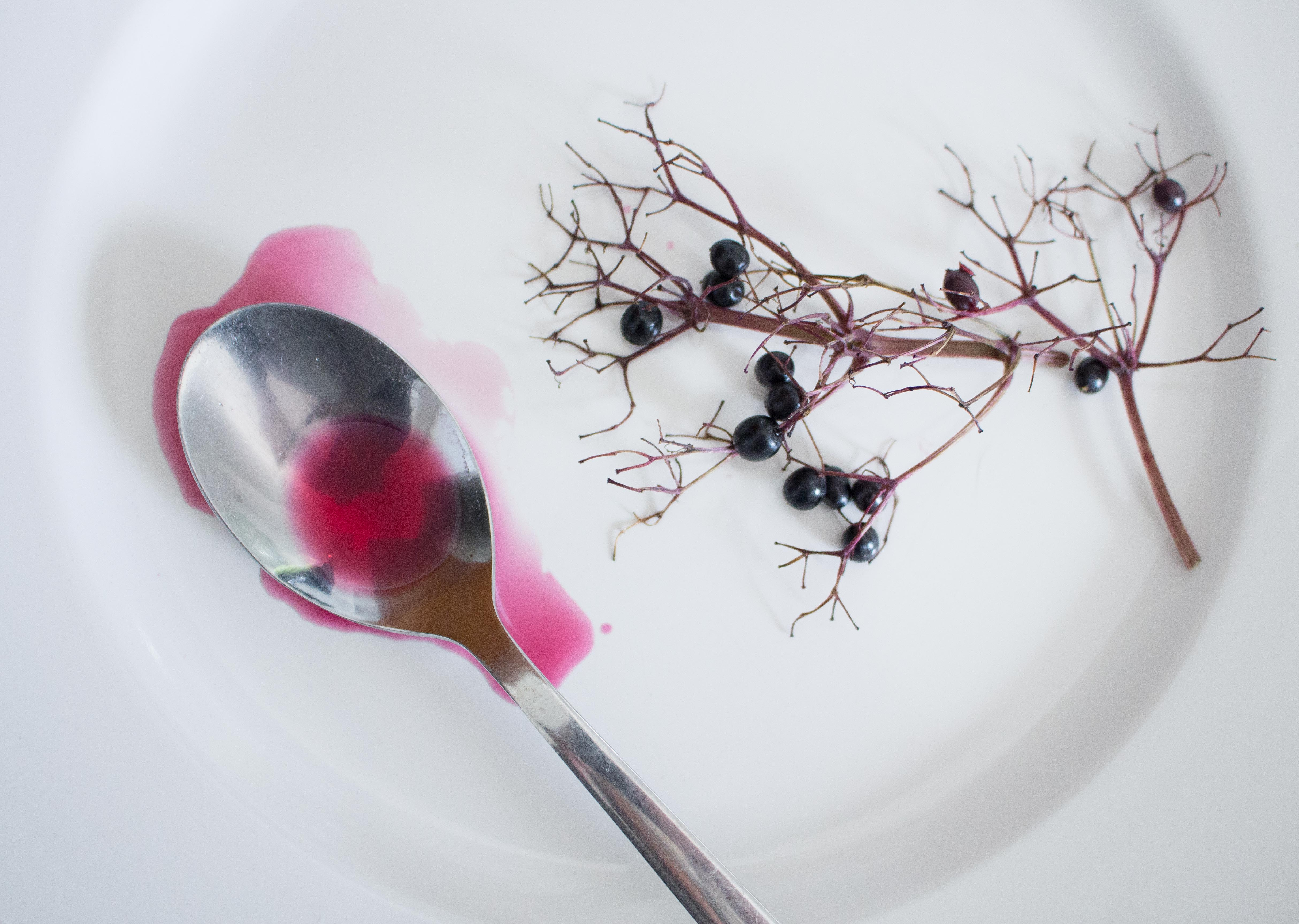 How To Make Elderberry Syrup With Fresh Or Dried Berries